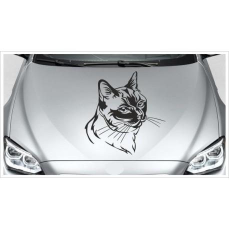 Aufkleber Motorhaube Katze Kätzchen Cat Schmusekatze Autoaufkleber Tattoo Auto Car
