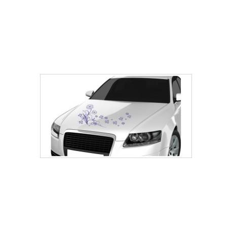 Motorhauben Aufkleber Auto Pusteblume Löwenzahn Blumen Blüten Tattoo Sticker Lack & Glas