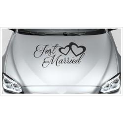 Just Married HOCHZEIT Herz Dekor Ehe Liebe Romantik 44